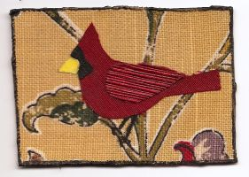 ATC Fabric Cardinal by claudiamm37