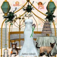 Scrap 3D: Wedding Day for your creativity by Gala3d