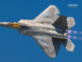 Famous and dangerous, the F-22A Raptor by R36ULAR-6UY