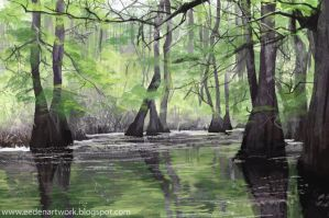 Swamp1 by Eedenartwork