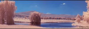 IR Panorama of Waterscape by Earthymoon
