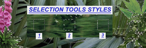 Selection tools styles LEER DESCRIPCION by Pr1nc33s