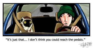 Lemur wants to Drive by t0mikaze
