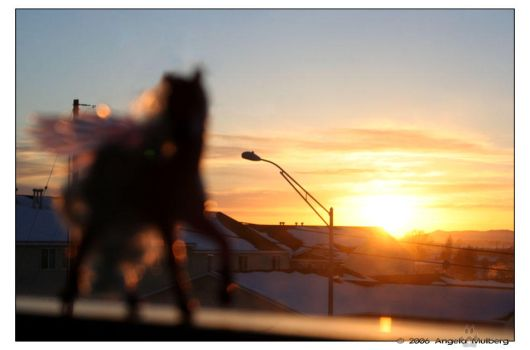 Pegasus Sunset by Astraea-photography