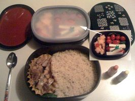 My first Bento XD by LunarBerry