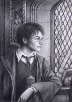 Harry Potter by edarlein by HogwartsArt
