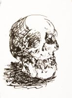 Skull in Black Ink by yensidtlaw1969