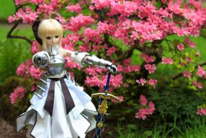 Saber Lily by Miko-Bura