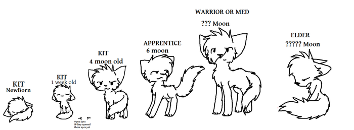 Warrio Cat Ageing lineart by Jetpackkitteh54
