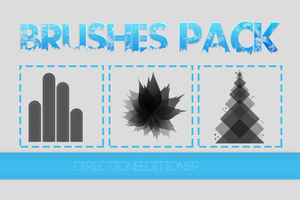 ++Brushes Pack by DirectionerEditionsP
