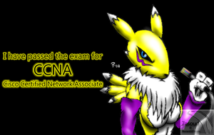 -:Renamon - CCNA completE:- by 7asoud