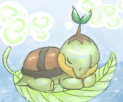 No 387 Turtwig by emraudark
