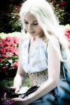 I Will Take What is Mine with Fire and Blood by Viverra1