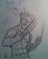 Small sketch of wolverine by MonkeyFire99