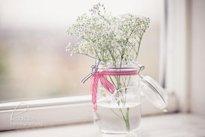 Babysbreath In A Jar by Lady-Tori