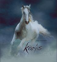 karis:: by equirena