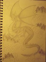 Dragon by aphid777