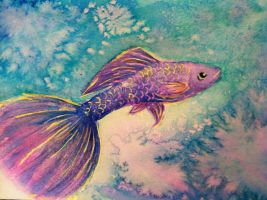 Purple Guppy by Viperosity