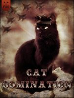 Cat Domination by Lunicc