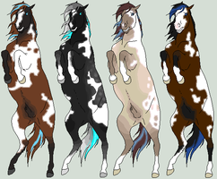 Dusana Horse Adopts by The-Halfway-House
