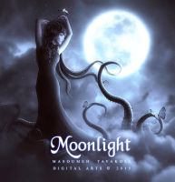 Moonlight by DigitalDreams-Art