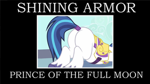Shining Armor Plot Meme by HewyToonmore