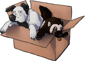 We're Livin' in a Box by MumsBu