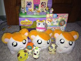Mini Hamtaro Collection! by TheCartoonKid