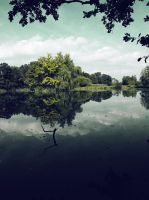 dark pond 2 by FrantisekSpurny