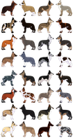 32 Canine Adoptables - 07 Left by smudge-92