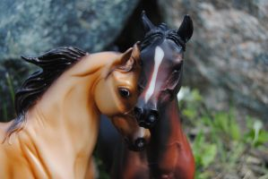 Breyer Love by SexyGreySheWolf