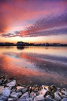 Lobster Claw Sky by Enkased