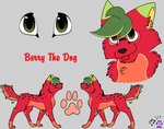 Berry The Dog Ref. by 1horsey10