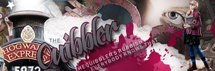 Quibbler and  Luna Banner by VaL-DeViAnT