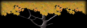 tree with falling leaves by shaeffer007