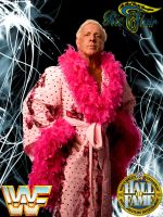 Ric Flair Promo by deviantfafnir