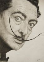 Dali, just Dali by Spangenberg