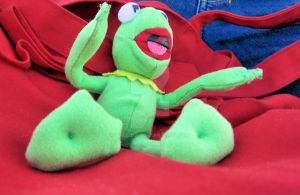 Kermit by pa3lina