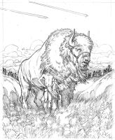 Great White Buffalo Pencils by JerMohler