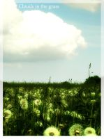 Clouds In The Grass by Nikander