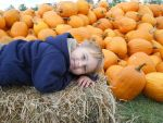 Pumpkin Patch by julie-jeanette1123
