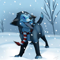 Catching Snowflakes by Naoki-Wolf