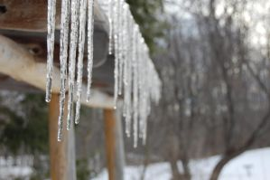Icicles by timothymh