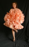 tutu barbie cancan by magikstock