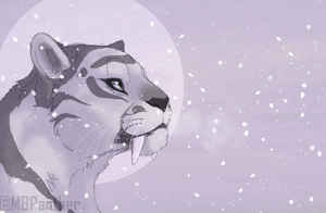 Diamonds in Disguise -Personal Art- by MBPanther