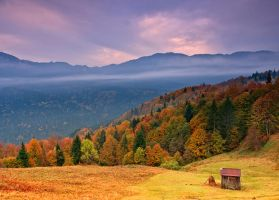 Autumn In Bukovina. by lica20