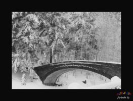 Snow and Bridge by Curim
