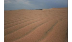sand dunes by indie-click