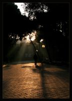 To The Light by Fembi
