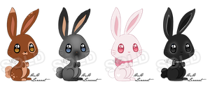Bunny Adoptables: Auction CLOSED by LisaJennifer